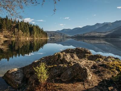 Forest reflection at lake Bohinj