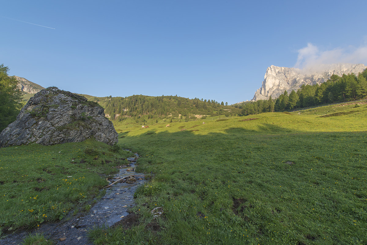 On the descent back to Cortina d'Ampezzo I noticed this beautiful scene. A small current, cows, meadows and a big mountain behind, what else could I want.