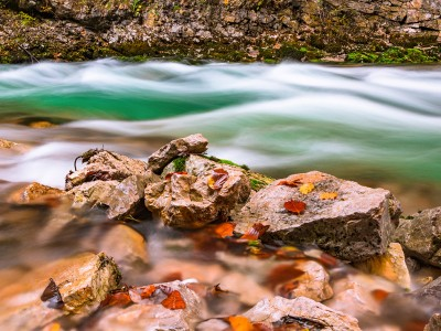Autumn scenery at Vintgar Gorge in Slovenia. Autumn leaves and a