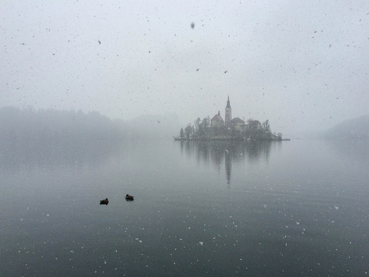 bled-snowing-1