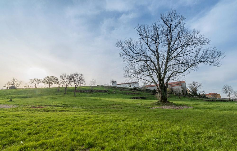 Farm in the grassland at sunrise