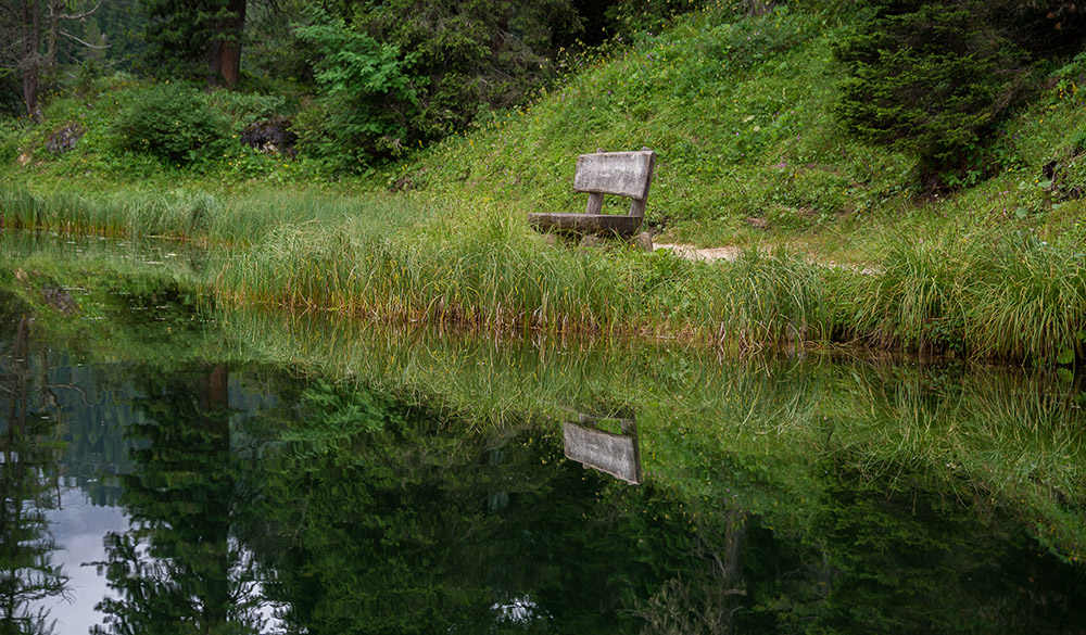 Peaceful reflection of the bench in the forest in Dolomites, Italy