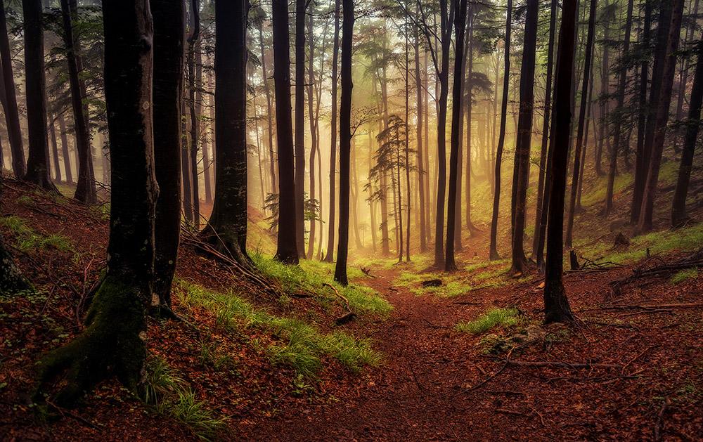 Spust skozi mistično atmosfero