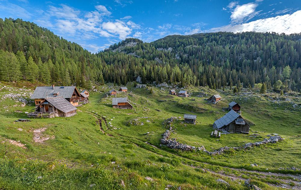 Mala vasica na Dednem polju