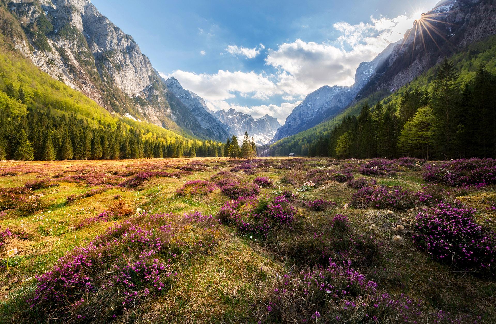 Dolina Krma spomladi