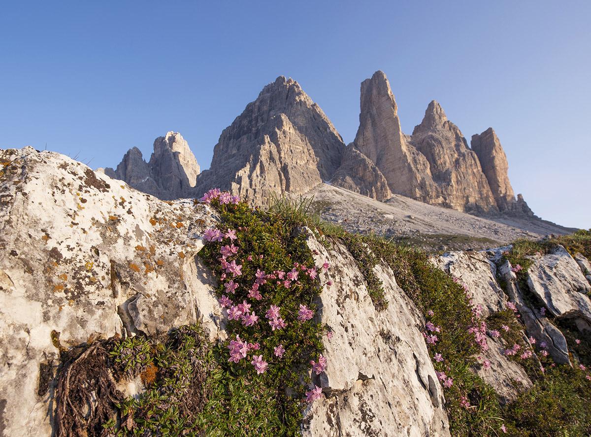 View of Tre Cime di Lavaredo