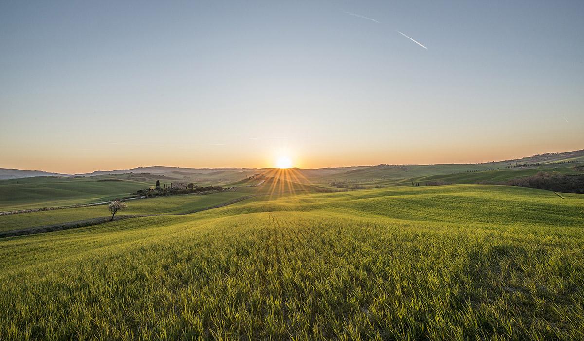 15_tuscany-grassland-sunset