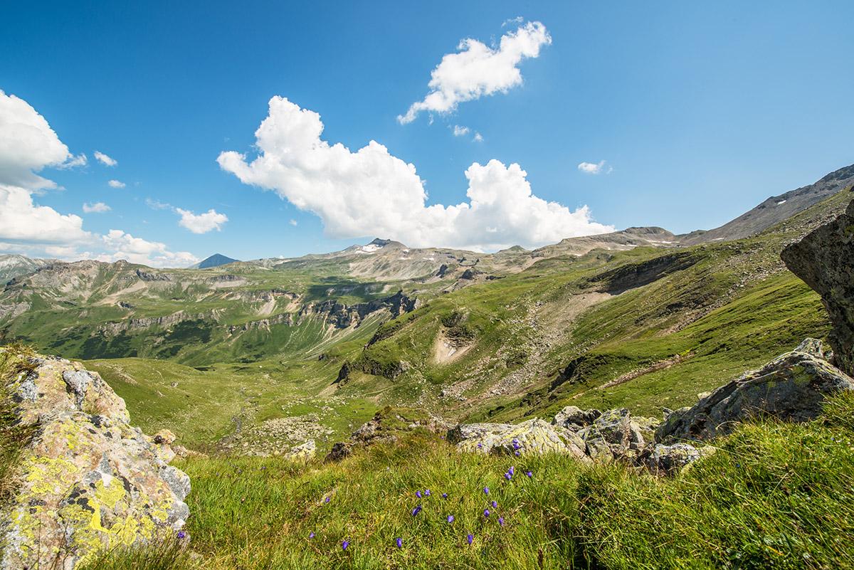 11-grossglockner-high-alpine-road-edelweissspitze