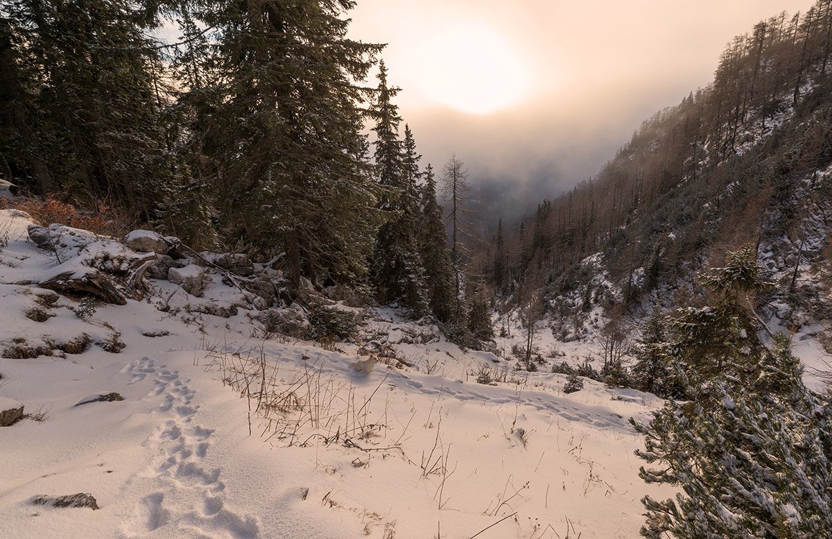 Winter sunrise in the mountains. Beautiful landscape of Julian Alps a day after the snow storm.