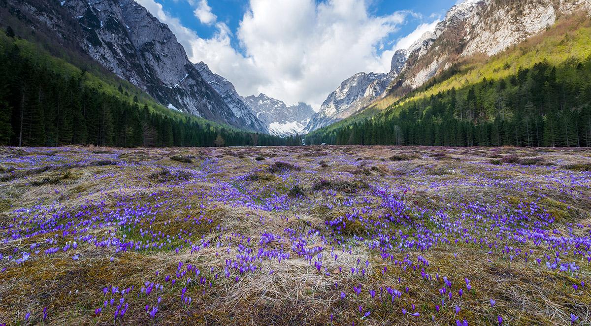 krma-valley-spring