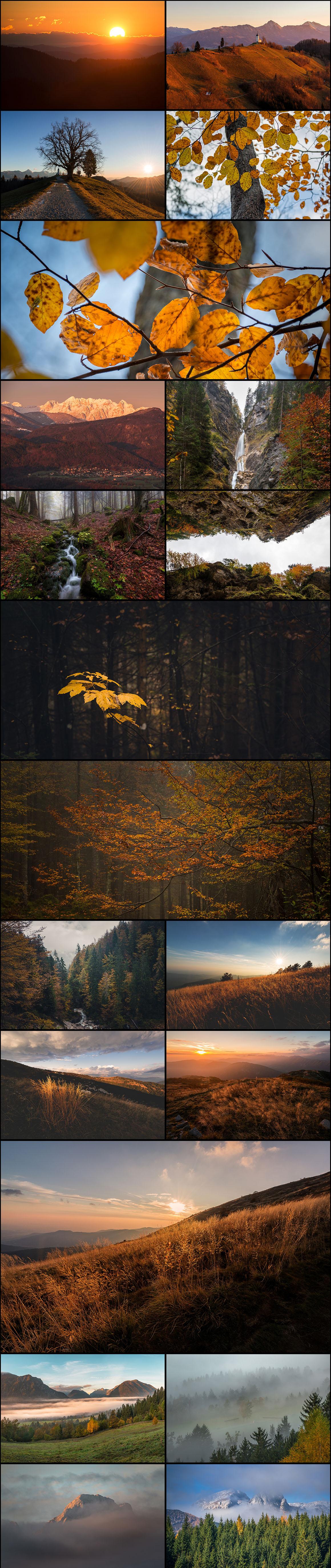 1-1-preview-autumn
