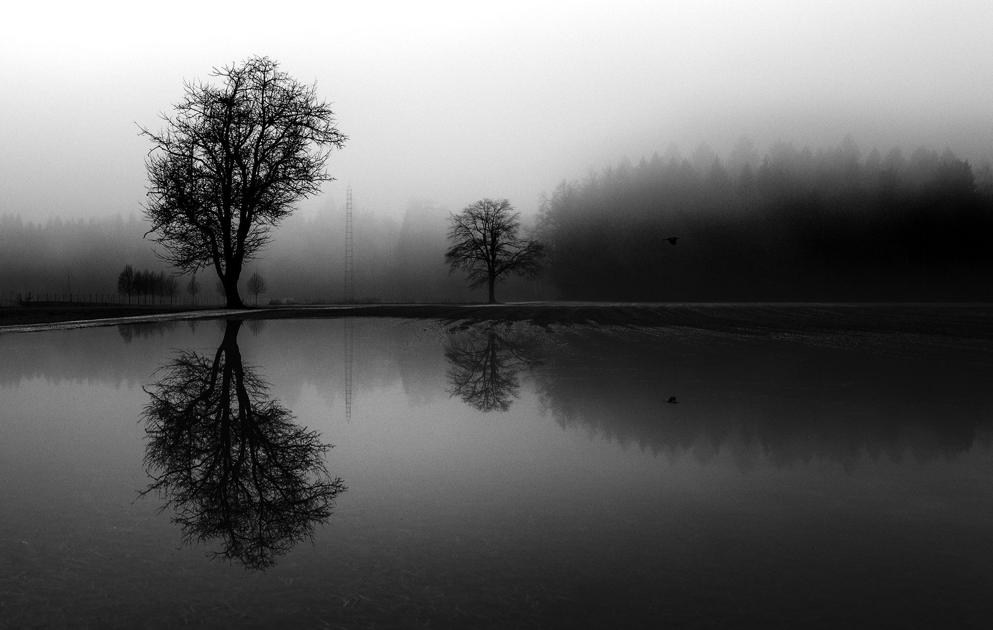 Swampy fields in the country and its dark reflections