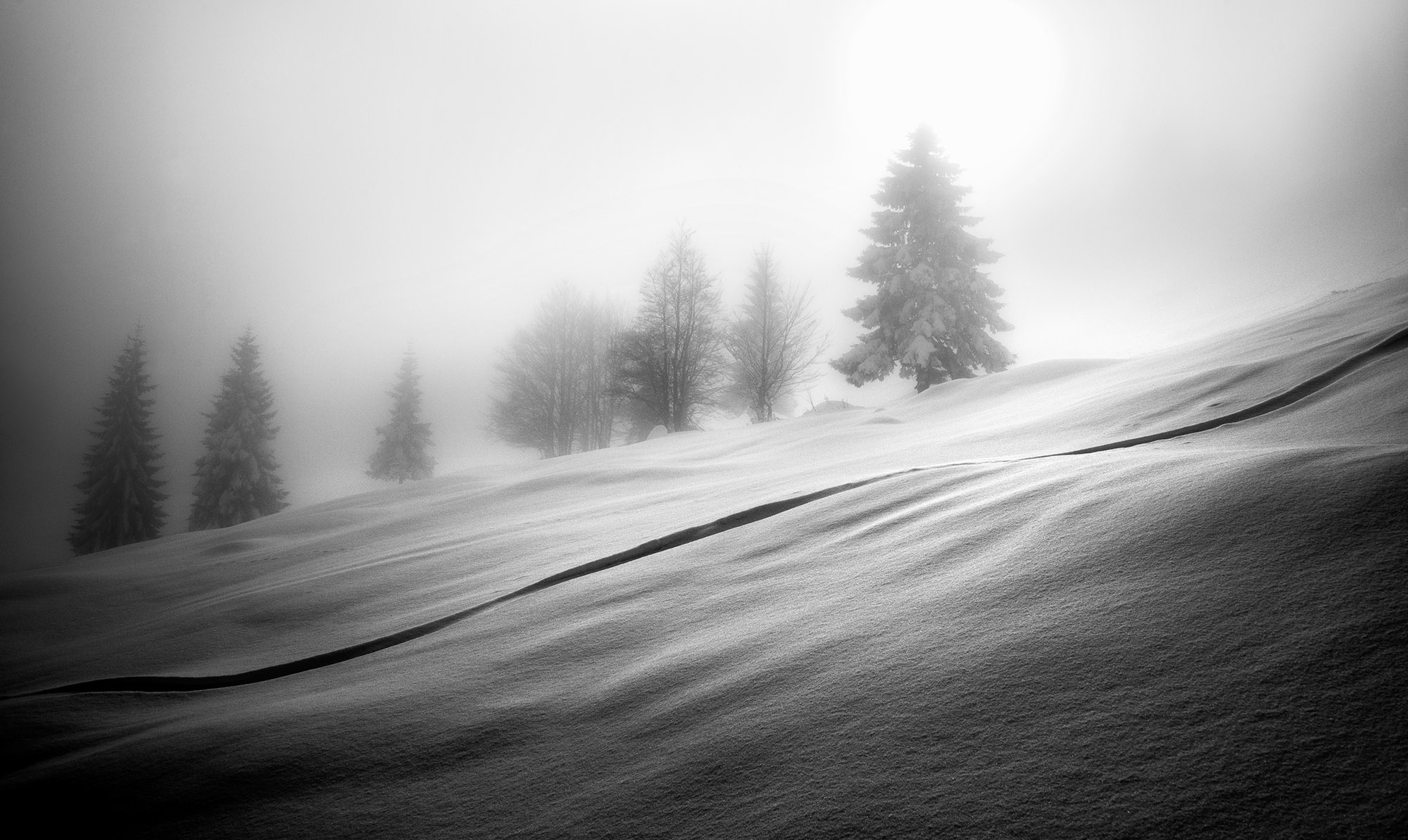 Winter In Black And White >> Dreamy Pixel Black And White Dreamy Pixel