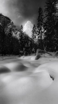 Free Iphone Wallpaper Snowy Landscape In Black And White